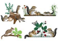 Οικογένεια των chipmunks Διανυσματική απεικόνιση