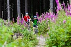 οικογένεια Biking Στοκ Φωτογραφία