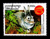 Οικογένεια Leporidae, έτος κουνελιών του κουνελιού serie, circa 1999 Στοκ φωτογραφία με δικαίωμα ελεύθερης χρήσης