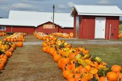 Οικογενειακά αγροκτήματα Roba στο δήμο βόρειου Abington στην Πενσυλβανία στοκ εικόνα