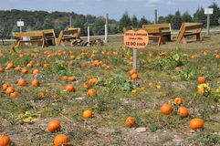Οικογενειακά αγροκτήματα Roba στο δήμο βόρειου Abington στην Πενσυλβανία στοκ φωτογραφία με δικαίωμα ελεύθερης χρήσης