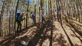 Οικογενειακά ταξίδια Περιβάλλον ανθρώπων από τα βουνά, ποταμοί, ρεύματα Περίπατος γονέων και παιδιών που χρησιμοποιεί τους πόλους απόθεμα βίντεο