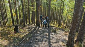 Οικογενειακά ταξίδια Περιβάλλον ανθρώπων από τα βουνά, ποταμοί, ρεύματα Περίπατος γονέων και παιδιών που χρησιμοποιεί τους πόλους φιλμ μικρού μήκους