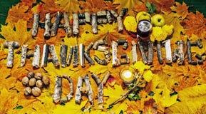 Οικογενειακή ημέρα των ευχαριστιών Idyll Στοκ Φωτογραφίες