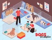 Οικογενειακή Isometric απεικόνιση καταφυγίων σκυλιών απεικόνιση αποθεμάτων