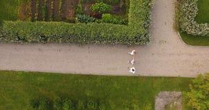 Οικογενειακοί περίπατοι στο πάρκο με έναν γιο απόθεμα βίντεο
