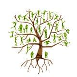 Οικογενειακό δέντρο, συγγενείς, σκιαγραφίες ανθρώπων Στοκ εικόνες με δικαίωμα ελεύθερης χρήσης