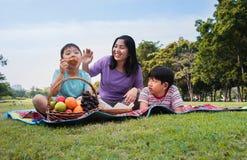 Οικογενειακό ευτυχές πικ-νίκ στοκ εικόνα με δικαίωμα ελεύθερης χρήσης