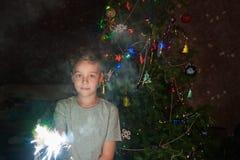 Οικογενειακό νέο έτος Στοκ Εικόνες