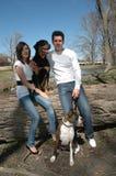 οικογενειακό πορτρέτο σκυλιών στοκ φωτογραφίες με δικαίωμα ελεύθερης χρήσης