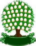 οικογενειακό δέντρο χρώμ Στοκ Εικόνα