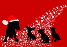 οικογενειακό santa σκυλιών Στοκ εικόνες με δικαίωμα ελεύθερης χρήσης