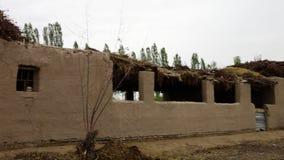 Οικοδόμηση με τη στέγη φιαγμένη από φύλλα και κλάδους απόθεμα βίντεο