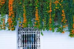 Οικοδόμηση με το παραδοσιακό παράθυρο που διακοσμείται με τα φρέσκα πορτοκαλιά λουλούδια Ισπανία, Nerja Στοκ Φωτογραφίες