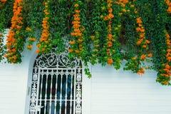 Οικοδόμηση με το παραδοσιακό παράθυρο που διακοσμείται με τα φρέσκα πορτοκαλιά λουλούδια Ισπανία, Nerja Στοκ εικόνα με δικαίωμα ελεύθερης χρήσης