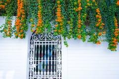 Οικοδόμηση με το παραδοσιακό παράθυρο που διακοσμείται με τα φρέσκα πορτοκαλιά λουλούδια Ισπανία, Nerja Στοκ φωτογραφίες με δικαίωμα ελεύθερης χρήσης