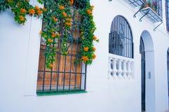 Οικοδόμηση με το παραδοσιακό παράθυρο που διακοσμείται με τα φρέσκα πορτοκαλιά λουλούδια Ισπανία, Nerja Στοκ Εικόνα