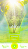 οικολογία καρτών Στοκ φωτογραφία με δικαίωμα ελεύθερης χρήσης