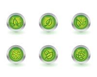 οικολογία κουμπιών Στοκ Εικόνες