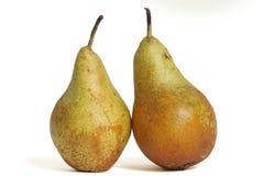 οικολογικά αχλάδια στοκ εικόνες