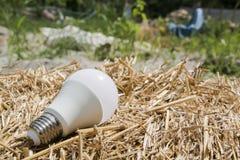 Οικολογικές άσπρες λάμπες φωτός στοκ φωτογραφία με δικαίωμα ελεύθερης χρήσης