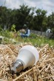 Οικολογικές άσπρες λάμπες φωτός στοκ εικόνες