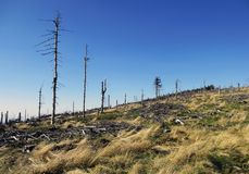 Οικολογική καταστροφή Στοκ φωτογραφία με δικαίωμα ελεύθερης χρήσης