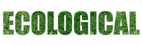 οικολογικός Στοκ εικόνες με δικαίωμα ελεύθερης χρήσης