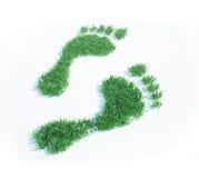 οικολογικό ίχνος