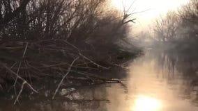 Οικολογικό πρόβλημα της περιβαλλοντικής ρύπανσης που προκαλείται από τον καπνό από μια πυρκαγιά στις όχθεις ποταμού απόθεμα βίντεο