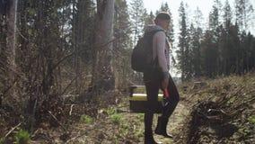 Οικολόγος στη δασική κατάρριψη απόθεμα βίντεο