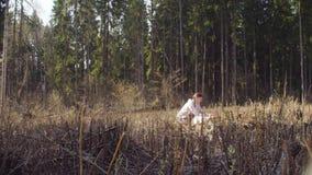 Οικολόγος στο δάσος που καταρρίπτει χαρακτηρίζοντας τη θέση στο χάρτη φιλμ μικρού μήκους