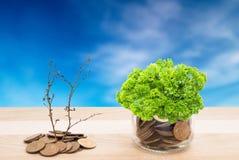 Οικονομία κάτω από την προστασία πράσινη Στοκ Εικόνες