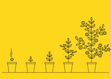 οικονομική ανάπτυξη έννοιας νομισμάτων πέρα από το λευκό φυτών Στοκ εικόνες με δικαίωμα ελεύθερης χρήσης