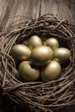 Οικονομικό αυγό φωλιών και πρόσθετος πλούτος οικοδόμησης και οικονομικός σχεδιασμός Στοκ φωτογραφία με δικαίωμα ελεύθερης χρήσης