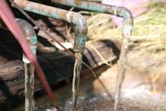 Οικοδεσπότης νερού Στοκ Φωτογραφία