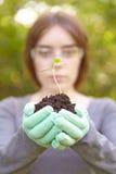Οικολογία και περιβαλλοντική συντήρηση. Φύτευση. Στοκ εικόνα με δικαίωμα ελεύθερης χρήσης