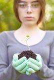 Οικολογία και περιβαλλοντική συντήρηση. Στοκ φωτογραφίες με δικαίωμα ελεύθερης χρήσης