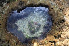 Οικολογικό νερό Στοκ Εικόνες