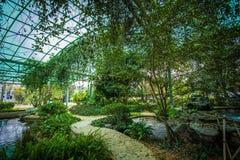 Οικολογικό πάρκο υγρότοπου Στοκ φωτογραφία με δικαίωμα ελεύθερης χρήσης
