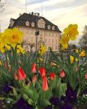 οικοδόμηση ευρωπαϊκά Στοκ εικόνες με δικαίωμα ελεύθερης χρήσης