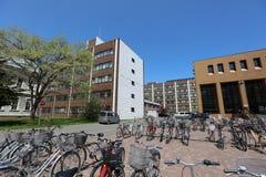 Οικοδόμηση κολλεγίων πανεπιστημιουπόλεων του πανεπιστημίου του Hokkaido Στοκ εικόνες με δικαίωμα ελεύθερης χρήσης