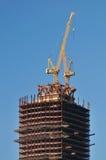 Οικοδόμηση του ουρανοξύστη Στοκ εικόνες με δικαίωμα ελεύθερης χρήσης