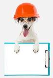 Οικοδόμος σκυλιών σε μια προστατευτική στολή με την ταμπλέτα γραφείων Στοκ Εικόνα