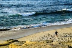 Οικότροφος αφρού στη Λα Χόγια, Καλιφόρνια Στοκ Φωτογραφίες