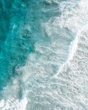 Οικότροφος κουπιών στο μπλε νερό στην ανατολή στοκ εικόνα
