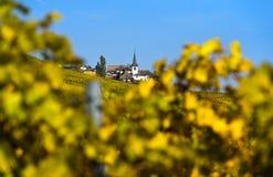 Οινοπαραγωγικό χωριό Féchy-Dessus στοκ φωτογραφία