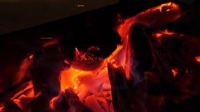Οι άνθρακες του ξύλου είναι κόκκινο πυράκτωσης με την πυρκαγιά Πυρκαγιές στα δάση Κινηματογράφηση σε πρώτο πλάνο απόθεμα βίντεο