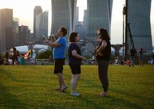 Οι άνθρωποι απολαμβάνουν στο πράσινο πάρκο στη Σιγκαπούρη Στοκ Εικόνες