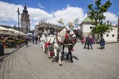 Οι άνθρωποι απολαμβάνουν τη Horse-drawn μεταφορά στο τετράγωνο αγοράς Στοκ φωτογραφία με δικαίωμα ελεύθερης χρήσης